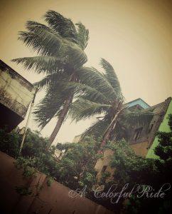 Vardha cyclone