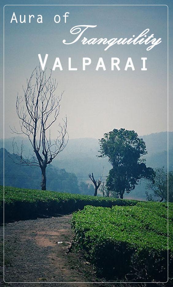 Valparai tourism