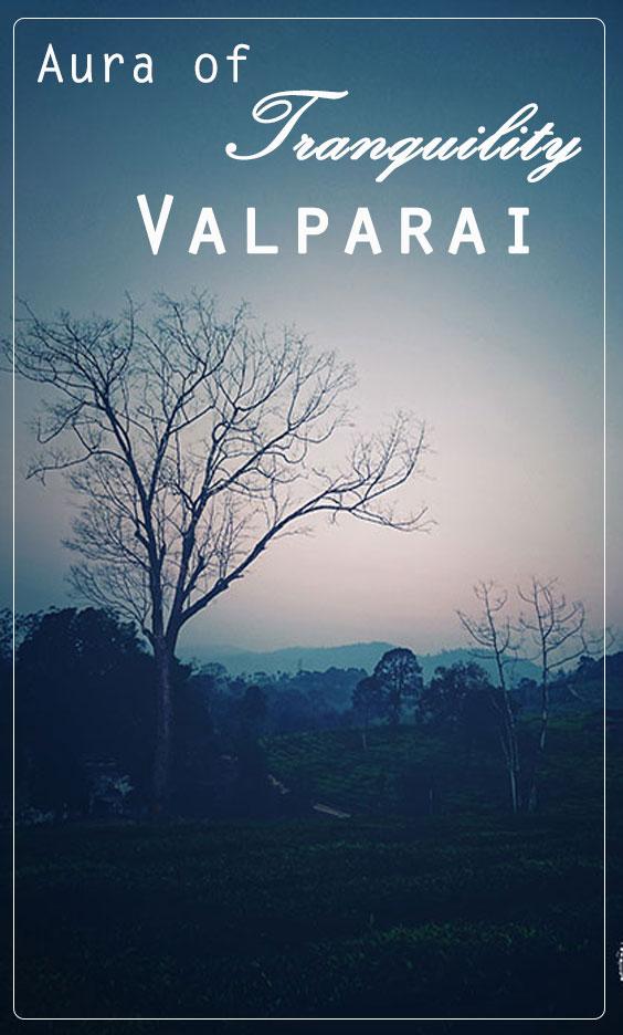 Valparai falls