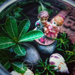 DIY: HOW TO MAKE A TERRARIUM AT HOME