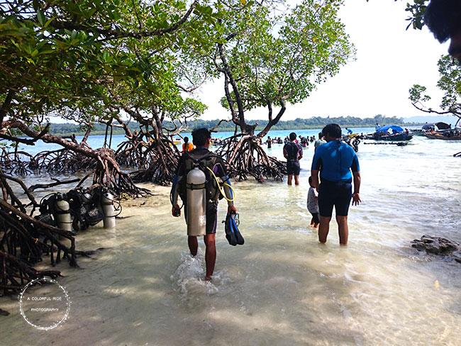 scuba diving andaman north bay island