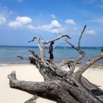HIGH ON ADVENTURE – ELEPHANT BEACH, HAVELOCK ISLAND
