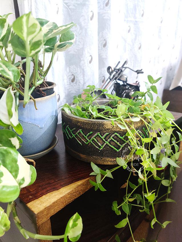 diy terracotta planters