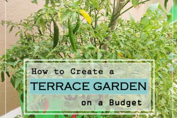 how to create a terrace garden