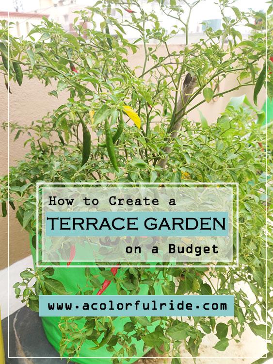 how to create a terrace garden