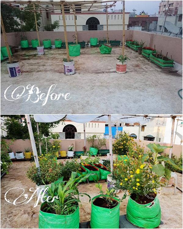 how to make a small terrace garden