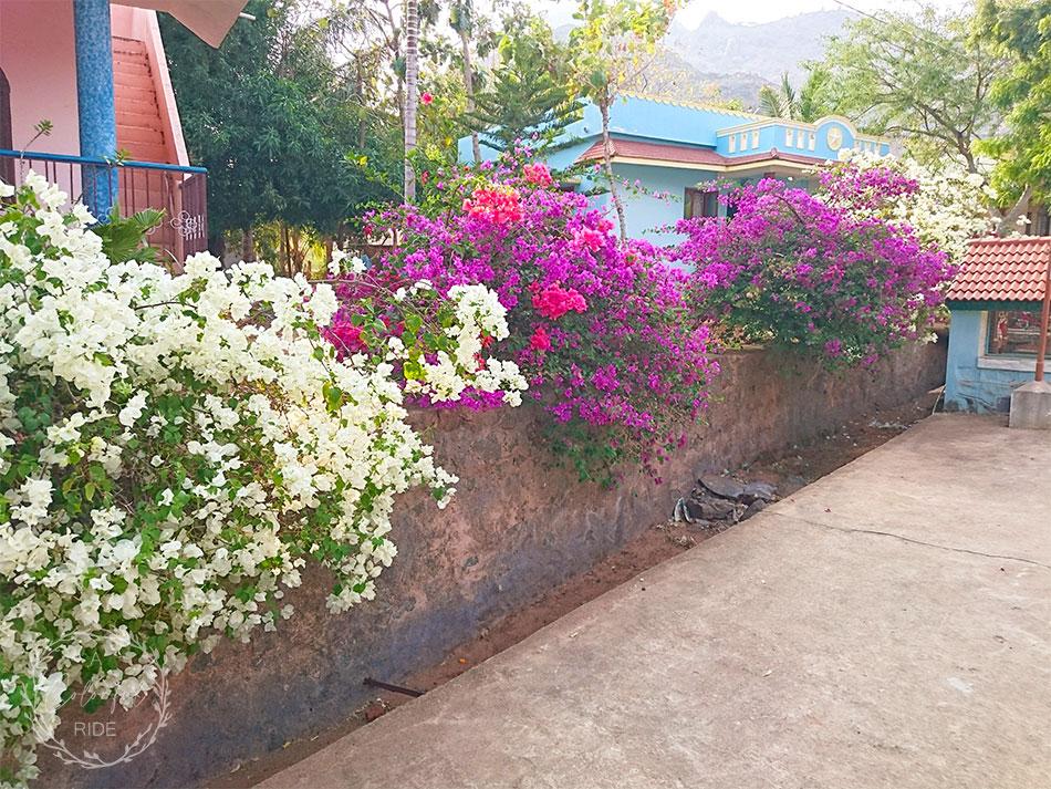 Thirumoola Nagar Kurusumalai