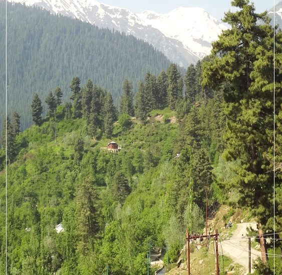 2 DAYS IN KASHMIR – THINGS TO DO!